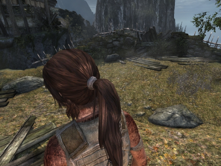 Low End PC Performance Guide: Tomb Raider - Gaming PC Builder